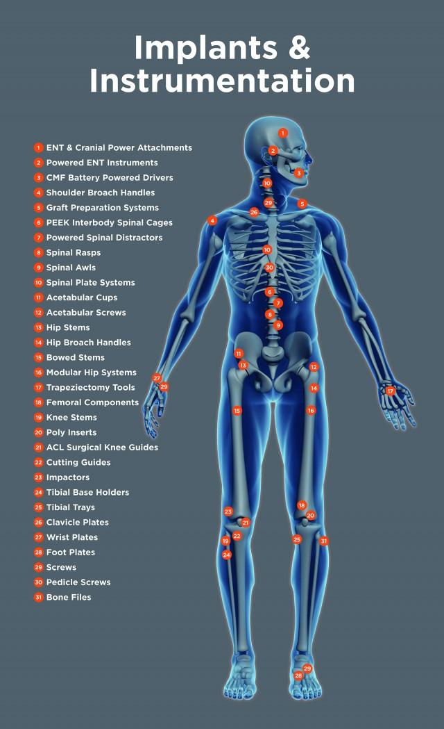 Human Body Panel